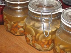 Einkochen und konservieren mit ingrids rezepten - Pilze in glaser einkochen ...